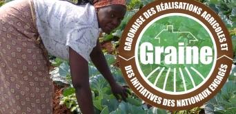 Gabonaise des réalisations agricoles et initiatives des nationaux engagés : vers l'indépendance alimentaire