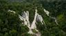 Biotope se plie en quatre pour la forêt