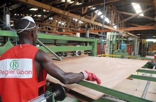 Le Gabon : feu vert pour les entreprises