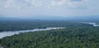 COP21 : le Gabon comme fer de lance africain d'un accord