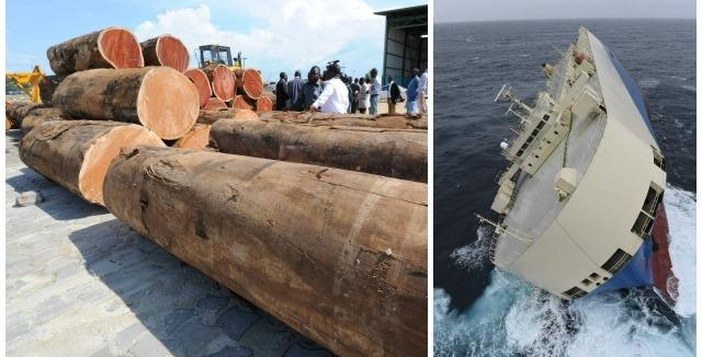 Des soupçons visant le bois transporté à bord du Modern Express
