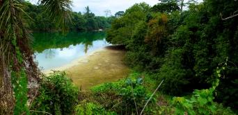 Le Gabon, plus vert que jamais