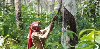 Siat-Gabon annonce une restructuration