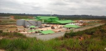 Olam accusé de déforestation au Gabon