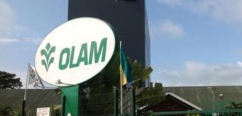 Le groupe Olam veut améliorer ses performances environnementales et sociales