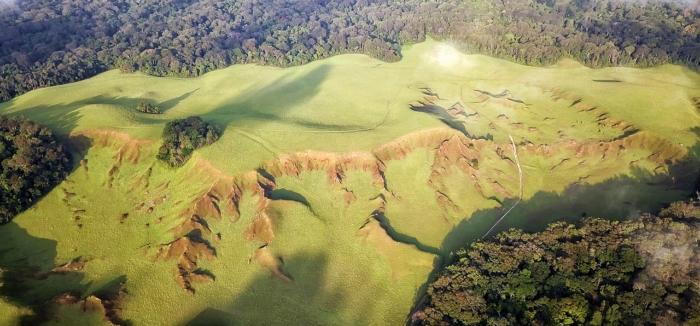 Le Gabon Wood Show à la recherche d'un second souffle