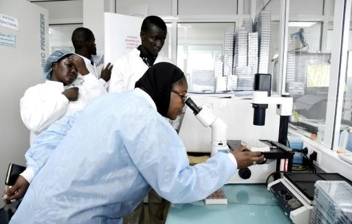 L'Afrique « fragile » se prépare à un risque élevé de propagation des coronavirus