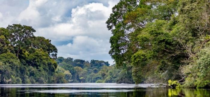 Les barrages hydroélectriques une menace pour les poissons du Gabon